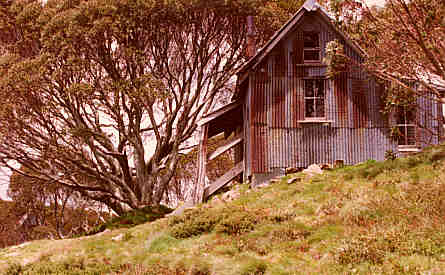 Old Alpine Hut in the Victorian Alps - Australia