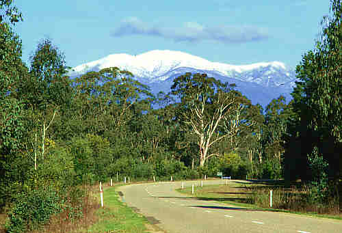 Mount Bogong in the Victorian Alps